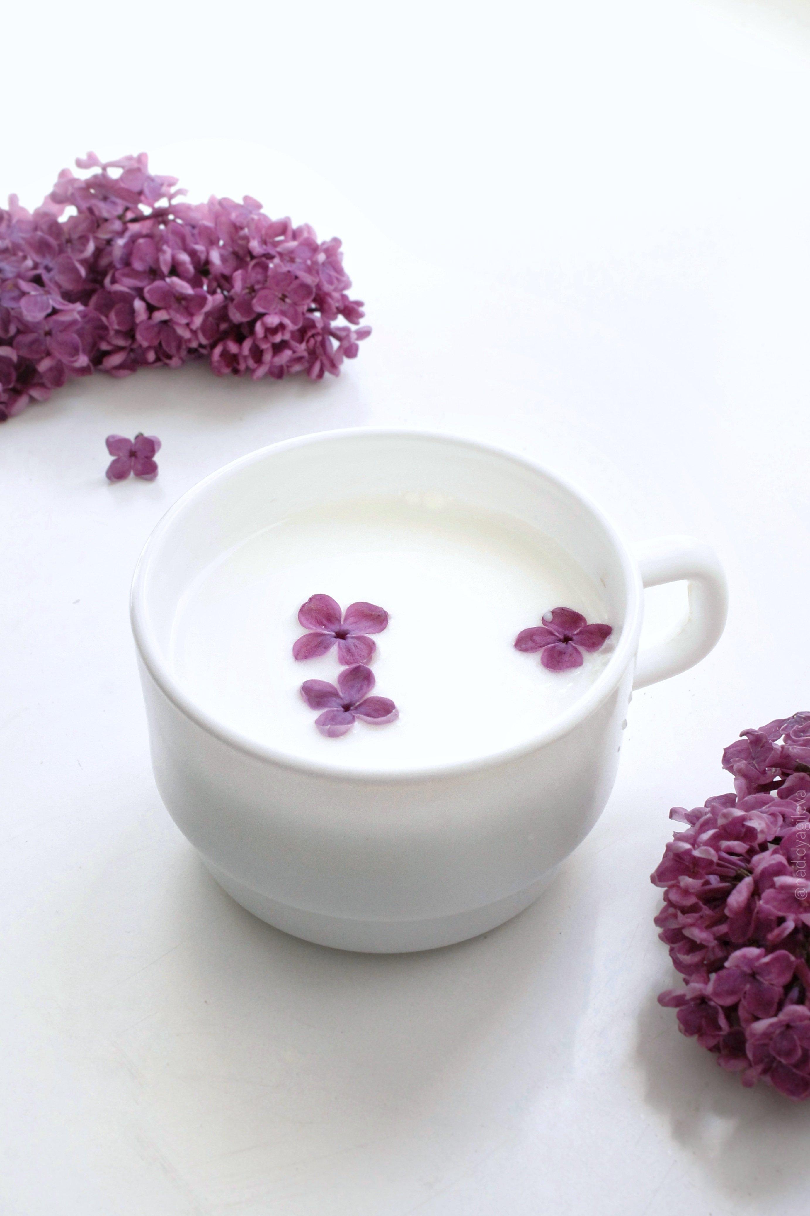 Color Palette – milk drink cup lilac flowers –  #e7e8ea, #6a3a57, #a1939b, #797570, #848080 – Purple Crystal color, Primitive Plum color, Nirvana color, Dry Mud color, Cloudburst color